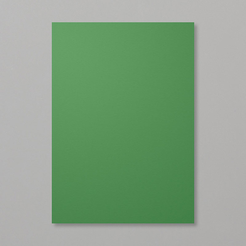 Garden Green A4 Cardstock