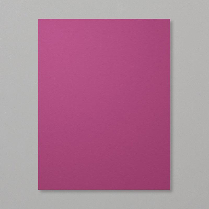 https://www.stampinup.com/ECWeb/product/115316/rich-razzleberry-8-1-2-x-11-cardstock?dbwsdemoid=2035972