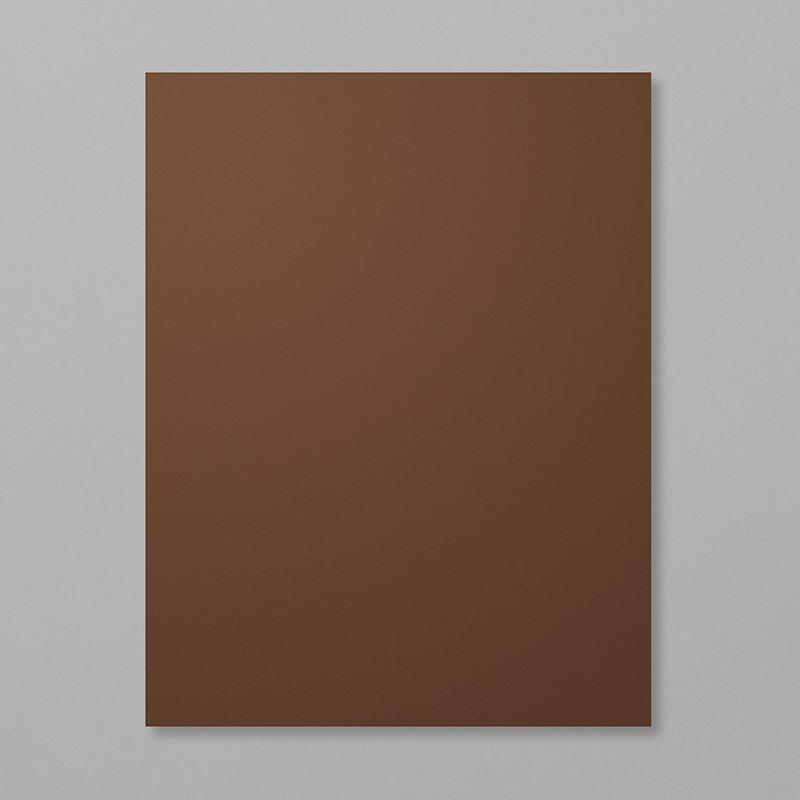 https://www.stampinup.com/ecweb/product/119686/early-espresso-8-1-2-x-11-cardstock?dbwsdemoid=2035972