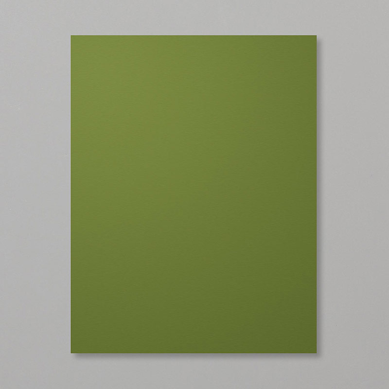 warm green meadow paper