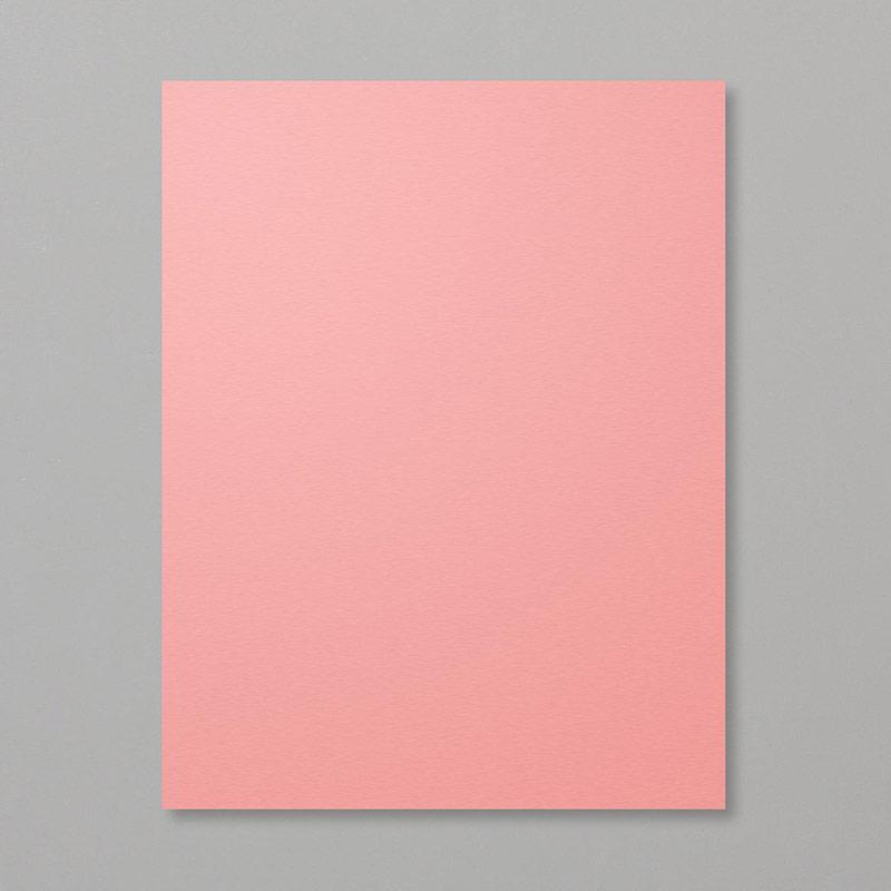 https://www.stampinup.com/ecweb/product/141416/flirty-flamingo-8-1-2-x-11-cardstock?dbwswdemoid=2035972