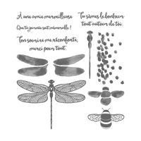 Songes De Libellule Photopolymer Stamp Set (French)