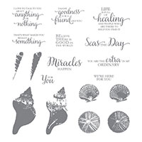 So Many Shells Photopolymer Stamp Set