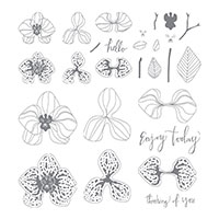 orchid flower stamp set