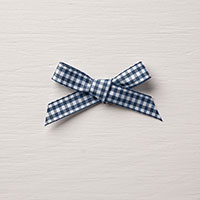 blue & white gingham ribbon