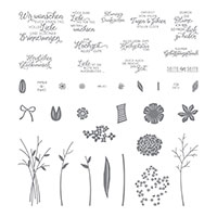 Blüten des Augenblicks Photopolymer Stamp Set (German)