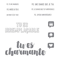 Tu es charmante Clear-Mount Stamp Set (French)