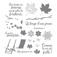 Saisons colorées Photopolymer Stamp Set (French)