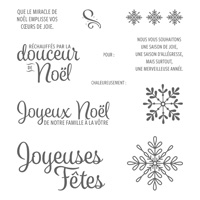 Souhaits en rafales Clear-Mount Stamp Set (French)