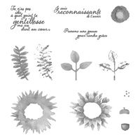 Récolte au pinceau Photopolymer Stamp Set (French)