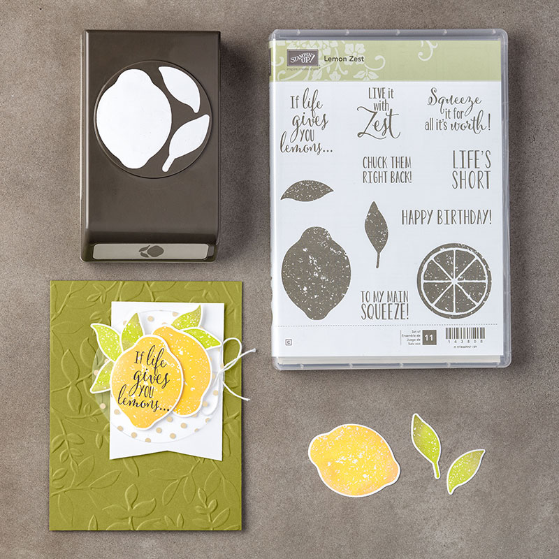 https://www.stampinup.com/ECWeb/product/145360/lemon-zest-clear-mount-bundle?dbwsdemoid=2035972