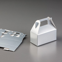 Silver Mini Gable Boxes