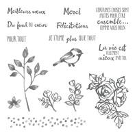 Palette de petales Jeu de timbres à monture transparente (français)