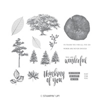 Rooted In Nature Wood-Mount Stamp Set