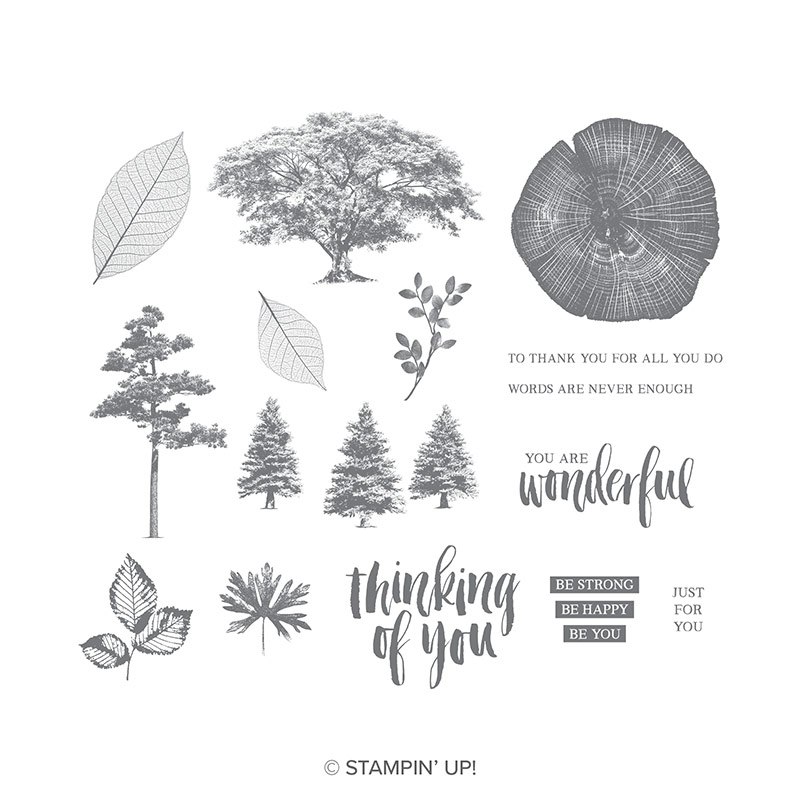 detailed realistic tree and leaf stamps