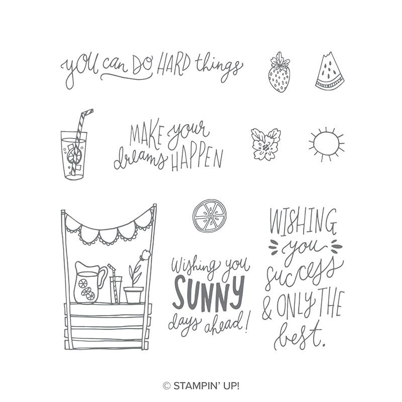 https://www.stampinup.com/ecweb/product/146735/sunny-days-clear-mount-stamp-set?dbwsdemoid=2035972
