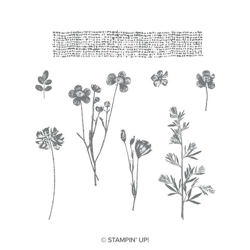 Pressed Flowers Clear-Mount Stamp Set