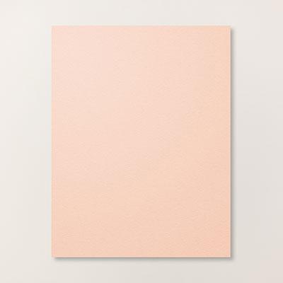 Petal Pink 8-1/2 x 11 Cardstock