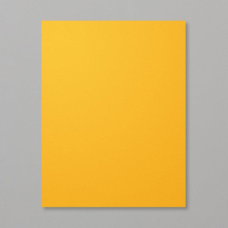 https://www.stampinup.com/ECWeb/product/146989/mango-melody-8-1-2-x-11-cardstock?dbwsdemoid=2035972