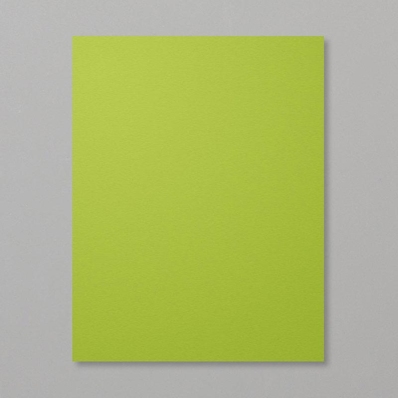 https://www.stampinup.com/ecweb/product/146990/granny-apple-green-8-1-2-x-11-cardstock?dbwsdemoid=2035972
