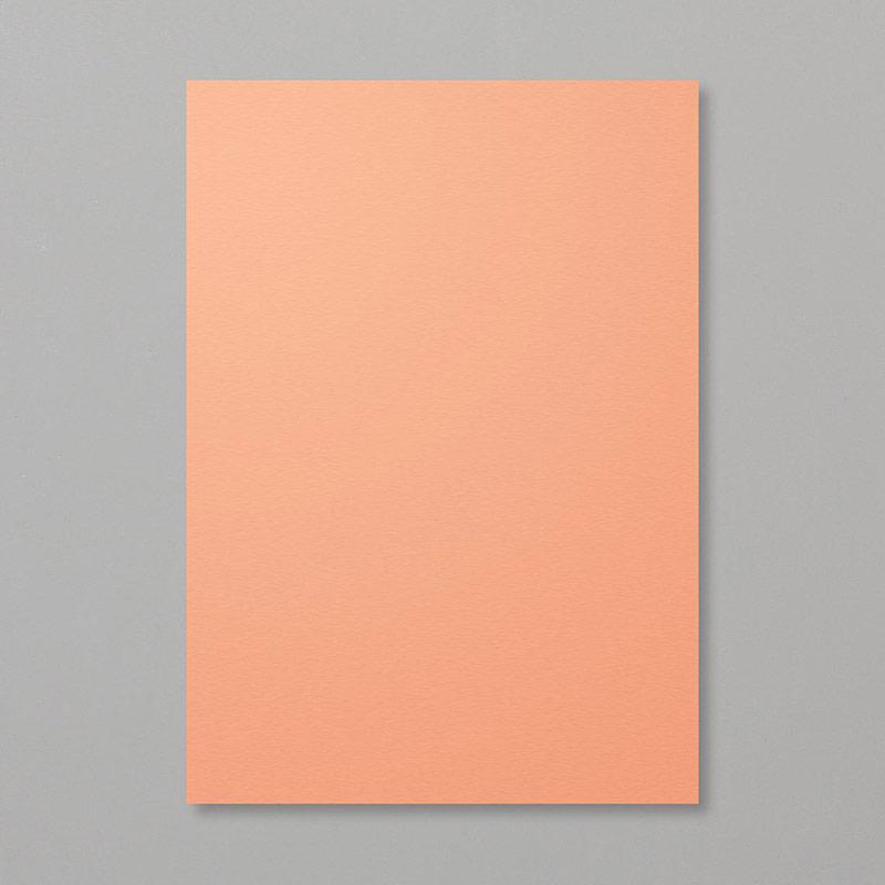 Grapefruit Grove A4 Cardstock
