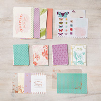 butterfly paper pack