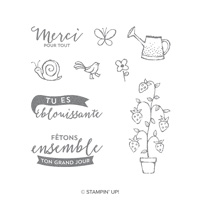 Promenade printanière Clear-Mount Stamp Set (French)