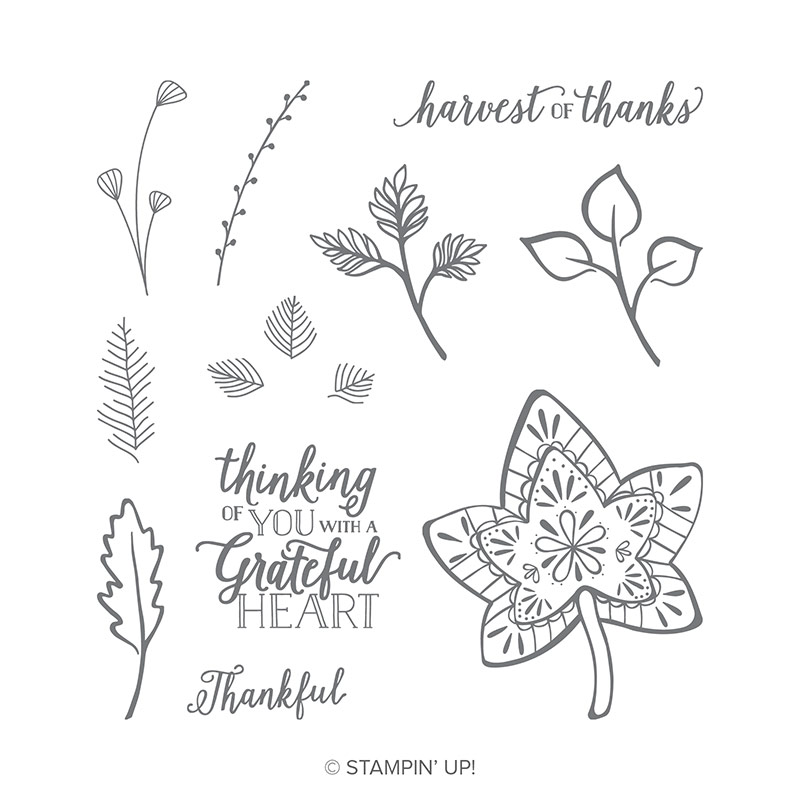 https://www.stampinup.com/ecweb/product/147680/falling-for-leaves-photopolymer-stamp-set?dbwsdemoid=2035972