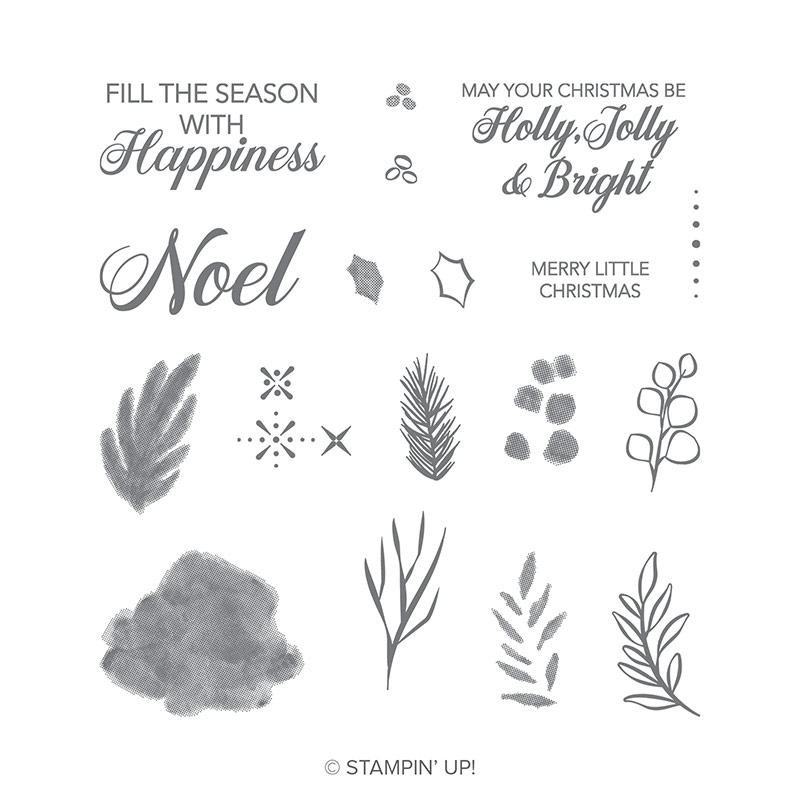 https://www.stampinup.com/ecweb/product/147694/peaceful-noel-photopolymer-stamp-set?dbwsdemoid=2035972