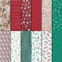 Joyous Noel 12 x 12 (30.5 x 30.5 cm) Specialty Designer Series Paper