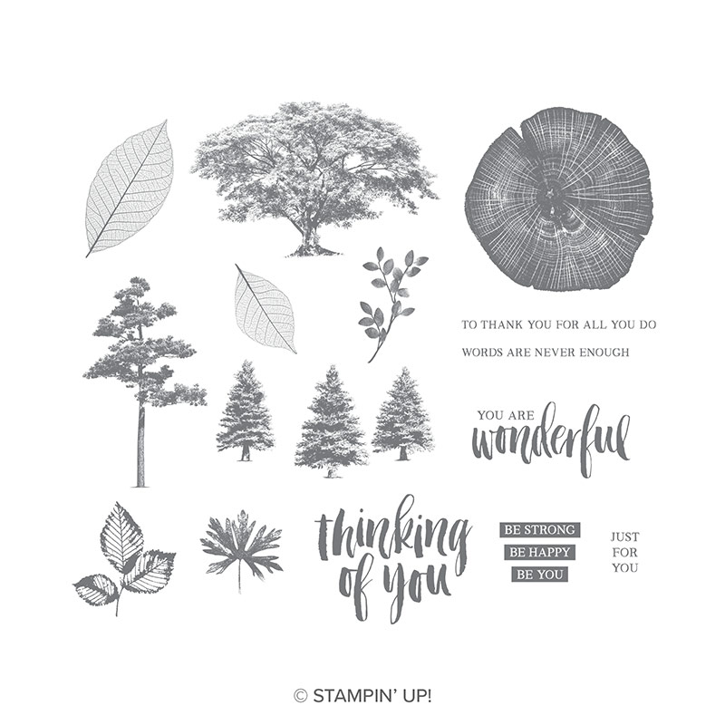 https://www.stampinup.com/ecweb/product/148217/rooted-in-nature-cling-mount-stamp-set?dbwsdemoid=2035972