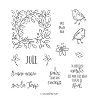Plumes et givre Photopolymer Stamp Set (French)