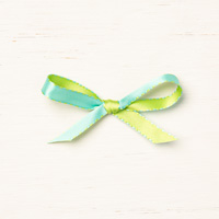 Coastal Cabana/Granny Apple Green 3/8 (1 Cm) Reversible Ribbon