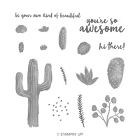 Flowering Desert Photopolymer Stamp Set