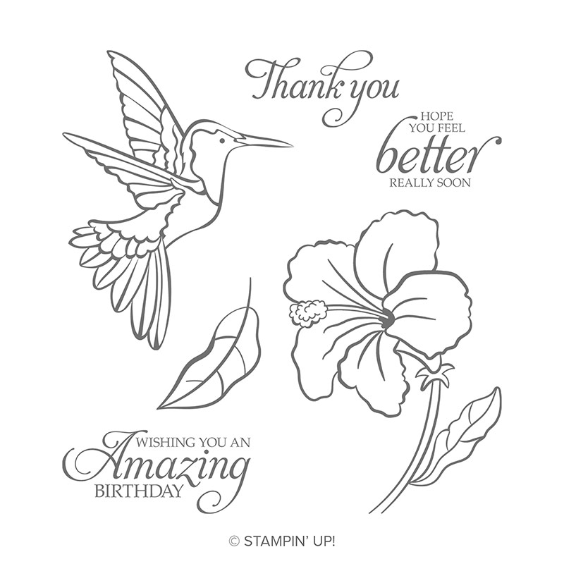 Humming Along Cling Stamp Set