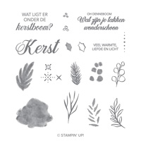 Vrede met kerst Photopolymer Stamp Set (Dutch)