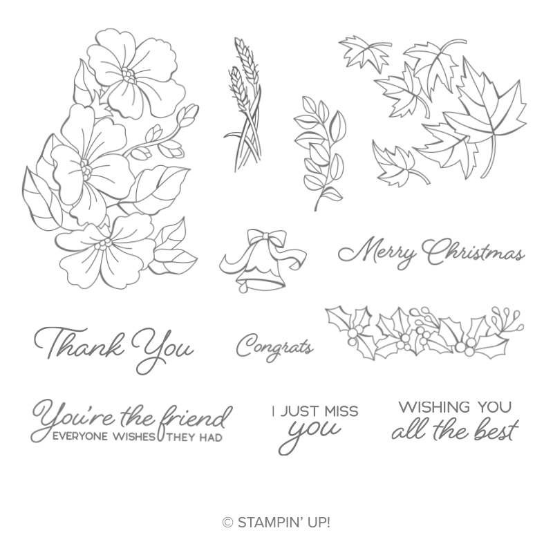 https://www.stampinup.com/ecweb/product/149016/blended-seasons-clear-mount-stamp-set?dbwsdemoid=2035972