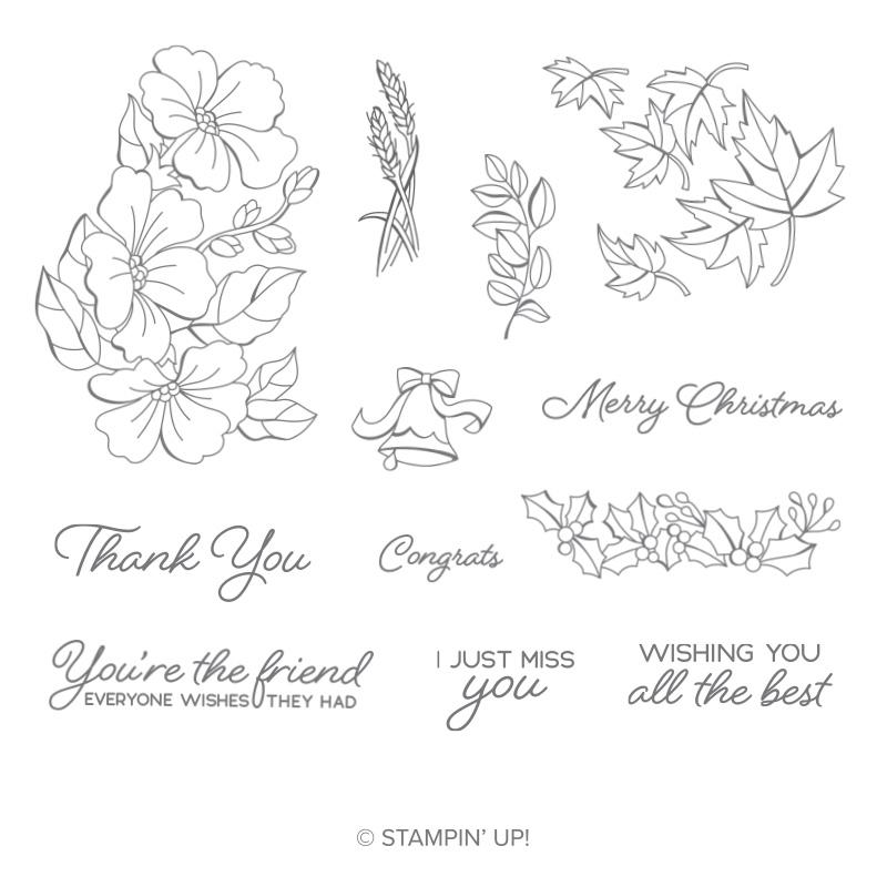https://www.stampinup.com/ecweb/product/149019/blended-seasons-wood-mount-stamp-set?dbwsdemoid=2035972