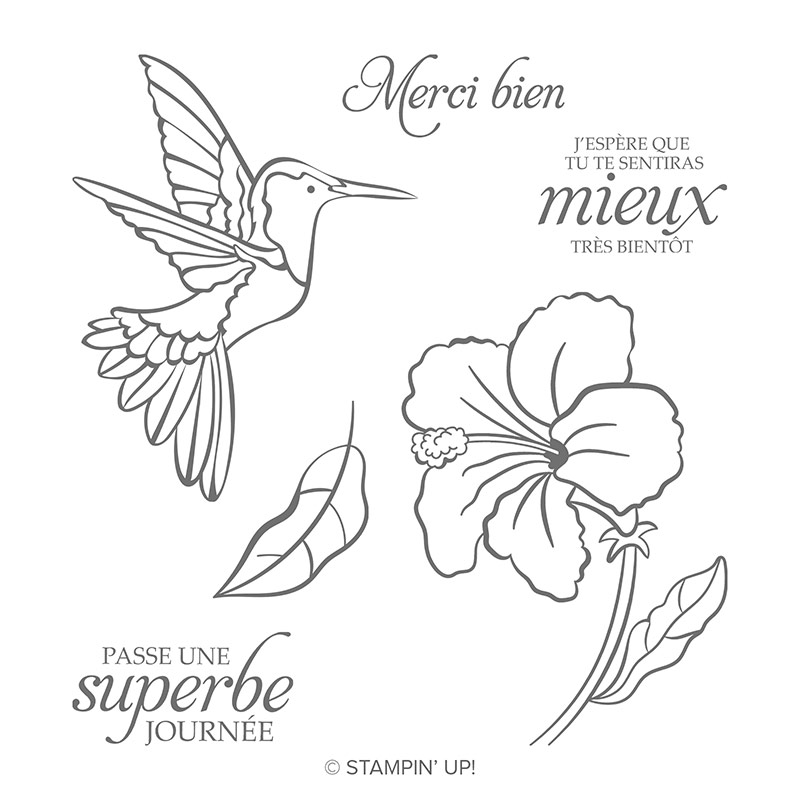 Colibri Amical Cling Stamp Set (French)