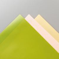 PERENNIAL ESSENCE 12 X 12 (30.5 X 30.5 CM) VELLUM CARDSTOCK