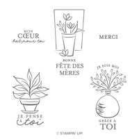 Tout Simplement Cling Stamp Set (French)