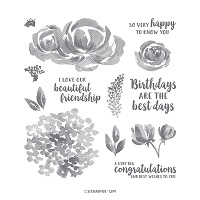 https://www.stampinup.com/ecweb/product/149252/beautiful-friendship-photopolymer-stamp-set?dbwsdemoid=2035972