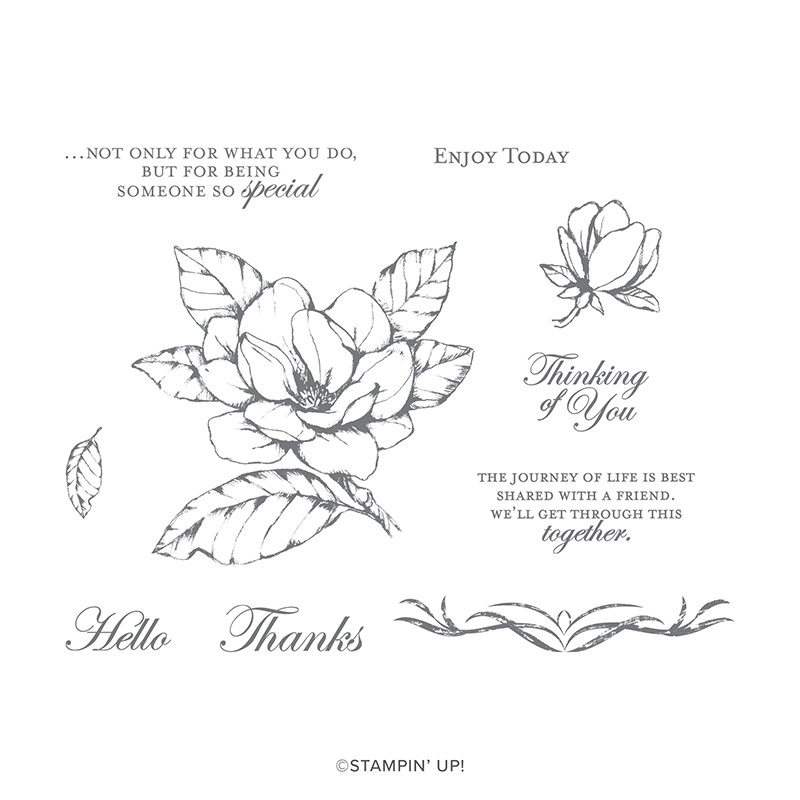 https://www.stampinup.com/ecweb/product/149298/good-morning-magnolia-cling-stamp-set?dbwsdemoid=2035972