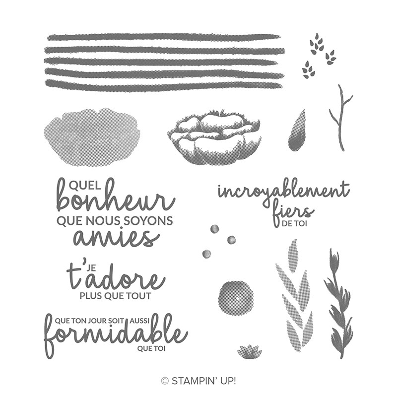 https://www2.stampinup.com/ecweb/product/149845/incroyable-comme-toi-photopolymer-stamp-set-french