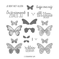 Vlinderdans Photopolymer Stamp Set (Dutch)