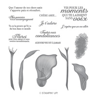 Calla Éternelle Photopolymer Stamp Set