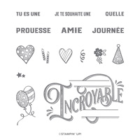 ABSOLUMENT INCROYABLE PHOTOPOLYMER STAMP SET (FRENCH)