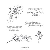 WINTERZWEIGE CLING STAMP SET (DE)