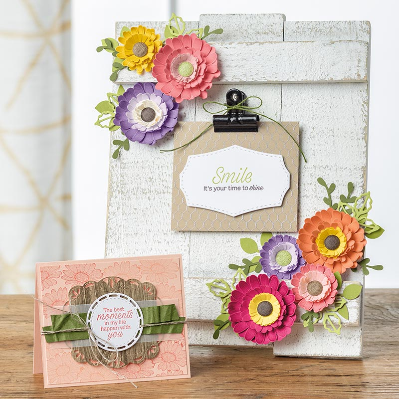 DAISY LANE BUNDLE