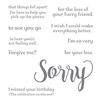 Sorry For Everything Cling-Mount Stamp Set